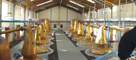 My First Distillery Tour